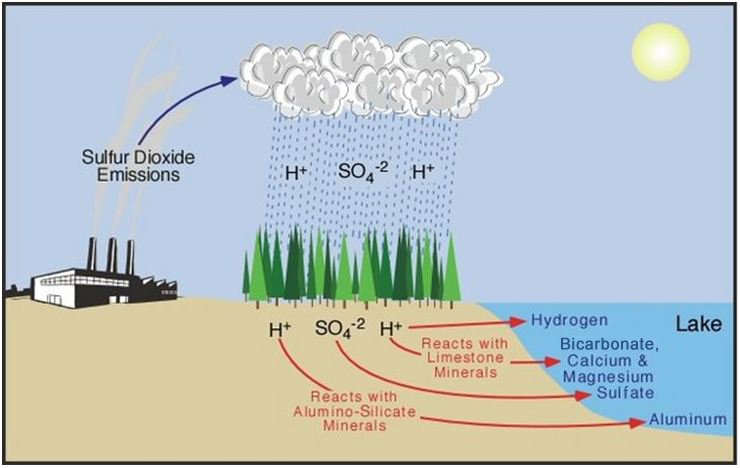 reaction about water pollution There are several causes of water pollution - organic, inorganic, as well as municipal, industrial and agricultural we'll discuss these very causes, in brief.